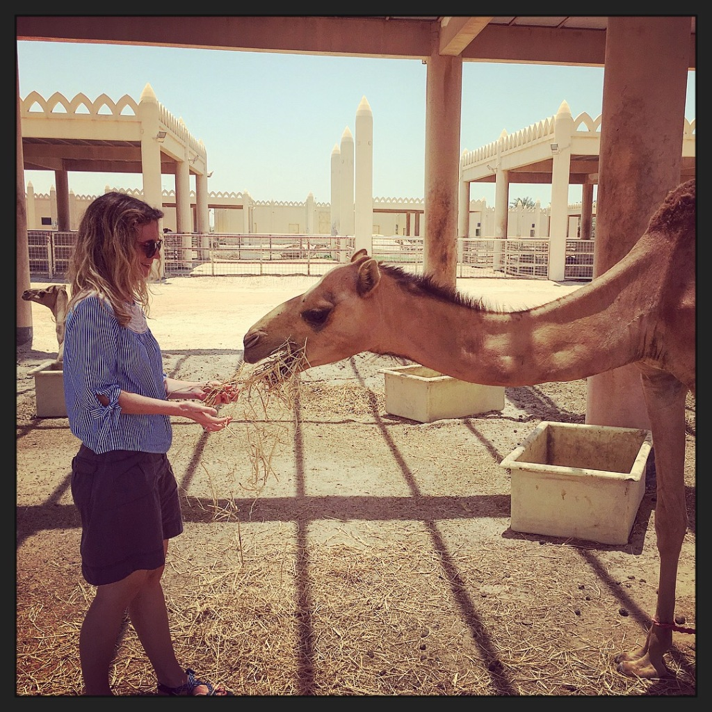 Making new friends in Bahrain in 2018.